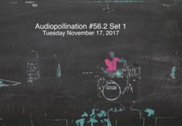 Audiopollination 56.2 set 1